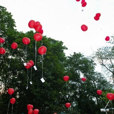 Luftballone mit Luftballonkarten zur Hochzeit steigen lassen