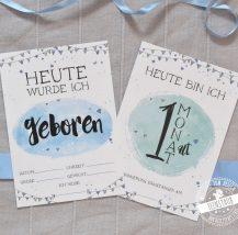Meilenstein Karten für einen Jungen 1-12 Monate
